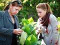 на факультете агрономии, садово-паркового и лесного хозяйства ведется подготовка специалистов по четырем направлениям