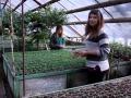 Производственная практика в японском саду