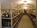Общий-вид-хранилища-коллекций-в-казематах