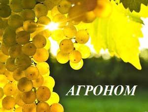Агроном ГУП «Севастопольский винодельческий завод»